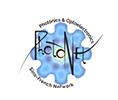 Logo_IRN_Photonet_1.png